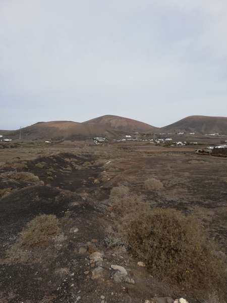 Properties for sale and rent in Lanzarote