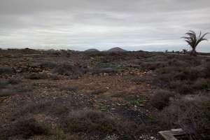 Grundstück/Finca zu verkaufen in Costa Teguise, Lanzarote.