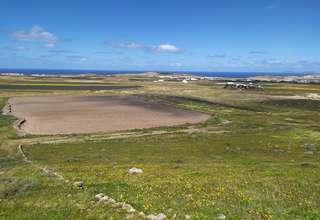 Terreno rústico/agrícola venta en Muñique, Teguise, Lanzarote.