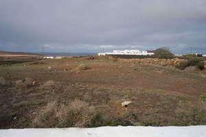 Terreno urbano venta en Muñique, Teguise, Lanzarote.