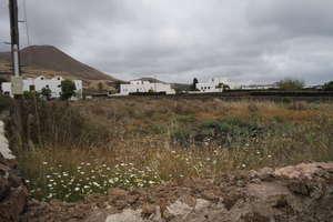Terreno urbano venta en Tiagua, Teguise, Lanzarote.