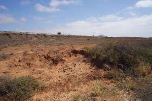 Terres agricoles vendre en Tahiche, Teguise, Lanzarote.
