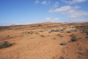 Terreno rústico/agrícola venta en Tahiche, Teguise, Lanzarote.