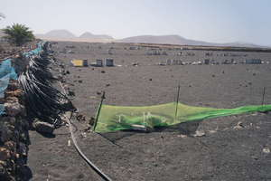 Rural/Agricultural land for sale in Soo, Teguise, Lanzarote.