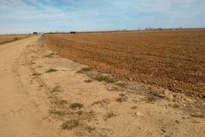 Terreno rústico/agrícola en Badajoz.