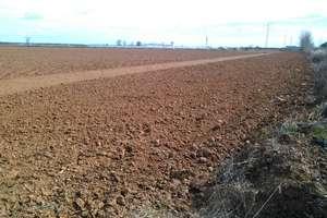 Terreno rústico/agrícola venta en Puebla del Prior, Badajoz.