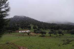 Terreno rústico/agrícola venta en Alburquerque, Badajoz.