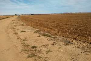 Rural/Agricultural land for sale in Badajoz.