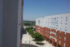 平 出售 进入 Cerro Gordo, Badajoz.