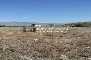 Rural/Agricultural land for sale in Alicún, Almería.