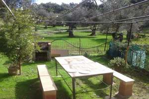 Plot for sale in Galaroza, Huelva.