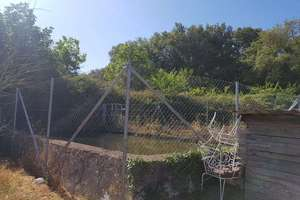 Plot for sale in Jabugo, Huelva.