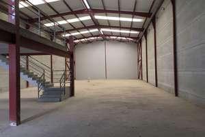 Warehouse in Albalat dels Sorells, Valencia.