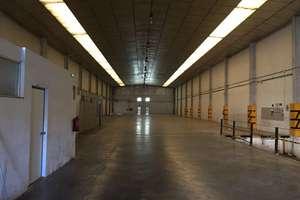 Warehouse in Polígono Fuente del Jarro, Paterna, Valencia.