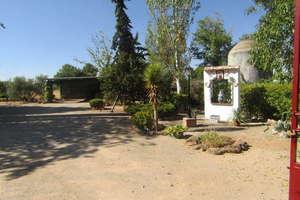 Country house for sale in Carretera Santa Cruz, Valdepeñas, Ciudad Real.