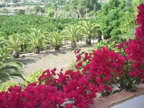 Villa vendre en Gandia, Valencia.