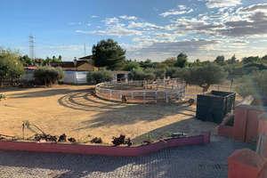 Ranch for sale in Alcalá de Guadaira, La Campiña, Sevilla.