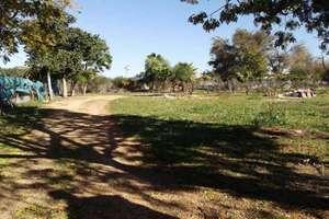 Landdistrikter / landbrugsjord til salg i Carmona, La Campiña, Sevilla.