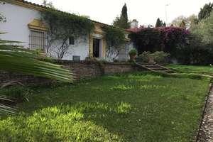 木屋 出售 进入 Tomares, Aljarafe, Sevilla.