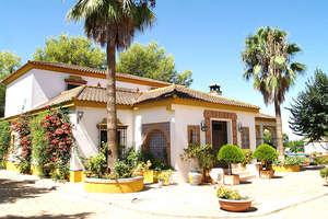 Finca venta en Carmona, La Campiña, Sevilla.