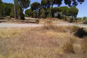 Grund til salg i Almonte, Huelva.