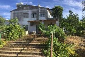 木屋 出售 进入 Villanueva del Ariscal, Aljarafe, Sevilla.
