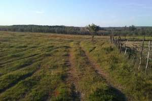 Plot for sale in Los Serranos, Almonte, Huelva.