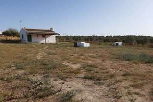 Ranch for sale in Los Serranos, Almonte, Huelva.