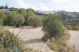 Terres agricoles vendre en Benissa, Alicante.