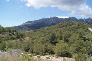 农业用地 出售 进入 Llíber, Alicante.