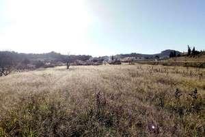 Сельский участок Продажа в Benissa, Alicante.
