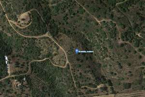 Rural/Agricultural land for sale in Zocueca, Guarromán, Jaén.
