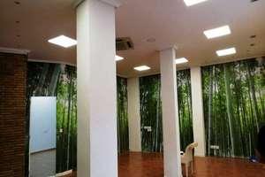 Commercial premise in Botanico, Valencia.