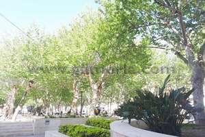Commercial premise in Paseo de Andalucía, Vélez-Málaga.