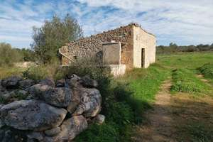 Rural/Agricultural land for sale in Costitx / Costitx, Costitx / Costitx, Baleares (Illes Balears), Mallorca.