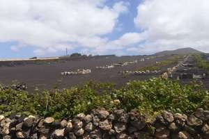 Plot for sale in Muñique, Teguise, Lanzarote.