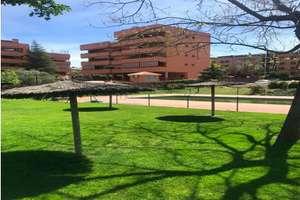 Flat for sale in Moraleja, La, Madrid.