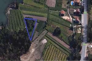 Parcela/Finca venta en O Terron, Vilanova de Arousa, Pontevedra.